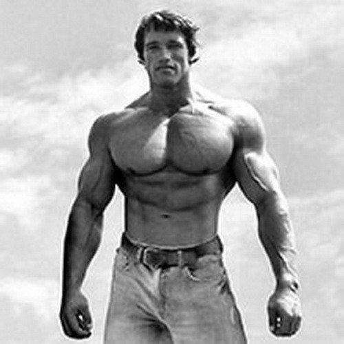 8 тренировочных принципов Арнольда Шварценеггера
