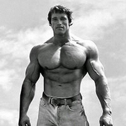 Как тренировался Арнольд: мышцы груди